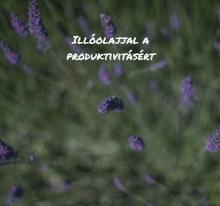 postimage-5_termeszetes_illoolaj_a_produktivitasert